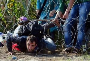 802926-des-migrants-passent-sous-la-barriere-de-barbeles-le-28-aout-2015-pres-de-roszke-a-la-frontiere-entr