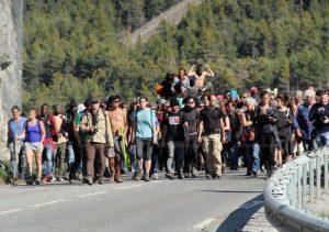 P6 migrants