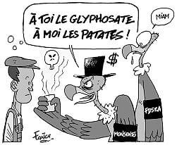 P8glyphosate2_NB